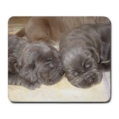 Neapolitan Pups Large Mousepads