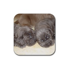 Neapolitan Pups Rubber Square Coaster (4 Pack)