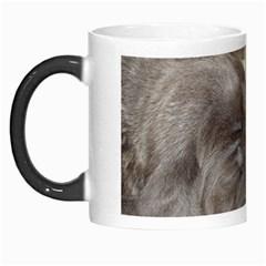 Neapolitan Pups Morph Mugs