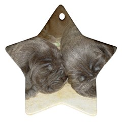 Neapolitan Pups Star Ornament (two Sides)