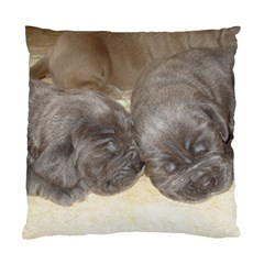 Neapolitan Pups Standard Cushion Case (two Sides)