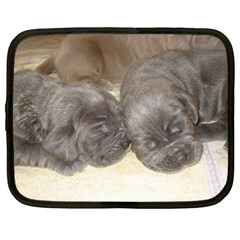 Neapolitan Pups Netbook Case (xl)