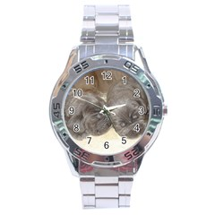 Neapolitan Pups Stainless Steel Analogue Watch