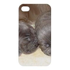 Neapolitan Pups Apple Iphone 4/4s Hardshell Case