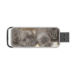 Neapolitan Pups Portable Usb Flash (two Sides)
