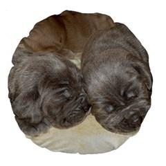 Neapolitan Pups Large 18  Premium Round Cushions