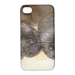 Neapolitan Pups Apple Iphone 4/4s Hardshell Case With Stand