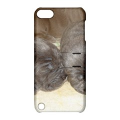Neapolitan Pups Apple Ipod Touch 5 Hardshell Case With Stand