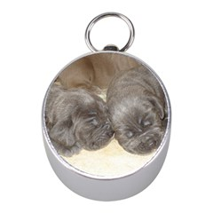 Neapolitan Pups Mini Silver Compasses