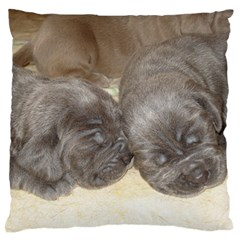 Neapolitan Pups Standard Flano Cushion Case (one Side)