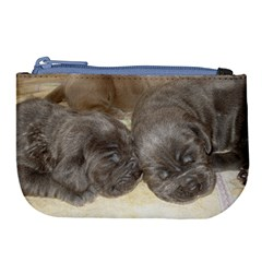 Neapolitan Pups Large Coin Purse