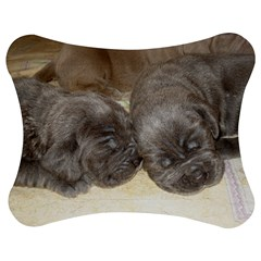 Neapolitan Pups Jigsaw Puzzle Photo Stand (bow)