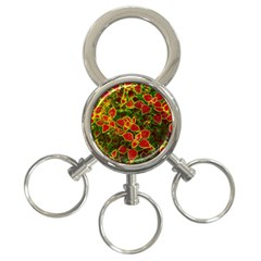 Flower Red Nature Garden Natural 3 Ring Key Chains