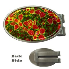 Flower Red Nature Garden Natural Money Clips (oval)