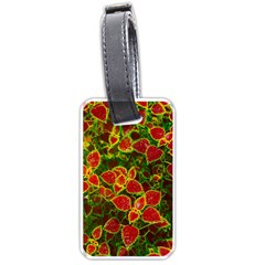 Flower Red Nature Garden Natural Luggage Tags (two Sides)