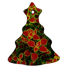 Flower Red Nature Garden Natural Christmas Tree Ornament (two Sides)