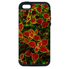 Flower Red Nature Garden Natural Apple Iphone 5 Hardshell Case (pc+silicone)