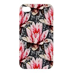 Water Lily Background Pattern Apple Iphone 4/4s Premium Hardshell Case