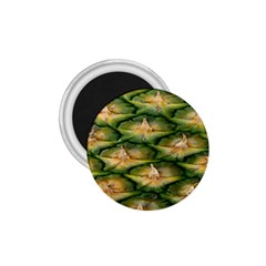 Pineapple Pattern 1 75  Magnets