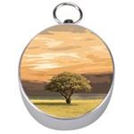 Landscape Silver Compasses Front