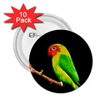 Parrot  2.25  Buttons (10 pack)  Front