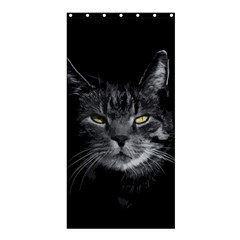 Domestic Cat Shower Curtain 36  X 72  (stall)