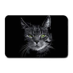 Domestic Cat Plate Mats