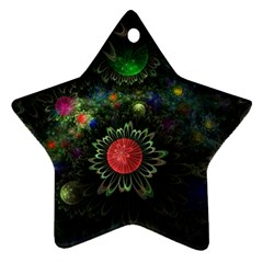 Shapes Circles Flowers  Star Ornament (two Sides)