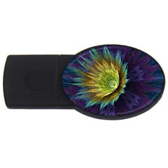 Flower Line Smoke  Usb Flash Drive Oval (4 Gb)
