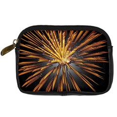 Pyrotechnics Thirty Eight Digital Camera Cases