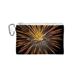 Pyrotechnics Thirty Eight Canvas Cosmetic Bag (s)