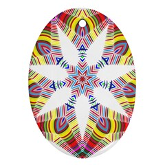 Colorful Chromatic Psychedelic Oval Ornament (two Sides)