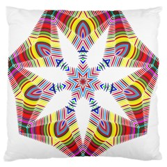 Colorful Chromatic Psychedelic Standard Flano Cushion Case (two Sides)