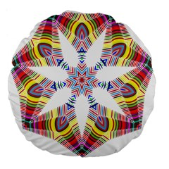 Colorful Chromatic Psychedelic Large 18  Premium Flano Round Cushions