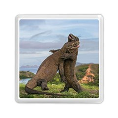 Komodo Dragons Fight Memory Card Reader (square)