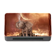Cute Baby Elephant On A Jetty Memory Card Reader With Cf