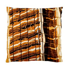 Abstract Architecture Background Standard Cushion Case (one Side)