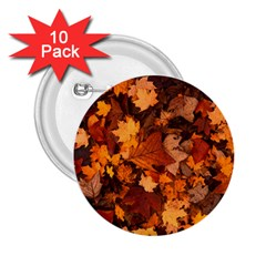 Fall Foliage Autumn Leaves October 2 25  Buttons (10 Pack)