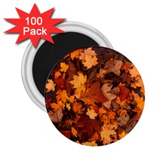 Fall Foliage Autumn Leaves October 2 25  Magnets (100 Pack)