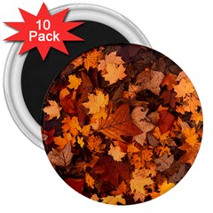 Fall Foliage Autumn Leaves October 3  Magnets (10 Pack)