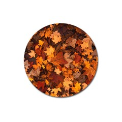 Fall Foliage Autumn Leaves October Magnet 3  (round)