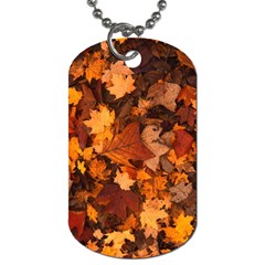 Fall Foliage Autumn Leaves October Dog Tag (one Side)