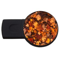 Fall Foliage Autumn Leaves October Usb Flash Drive Round (2 Gb)