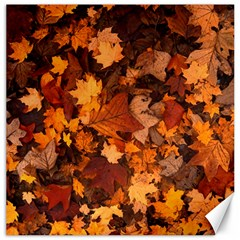 Fall Foliage Autumn Leaves October Canvas 16  X 16
