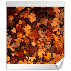 Fall Foliage Autumn Leaves October Canvas 20  X 24