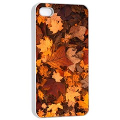 Fall Foliage Autumn Leaves October Apple Iphone 4/4s Seamless Case (white)