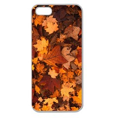 Fall Foliage Autumn Leaves October Apple Seamless Iphone 5 Case (clear)