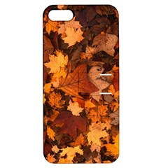 Fall Foliage Autumn Leaves October Apple Iphone 5 Hardshell Case With Stand
