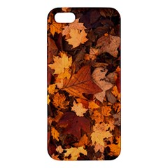 Fall Foliage Autumn Leaves October Iphone 5s/ Se Premium Hardshell Case