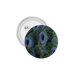 Peacock Feathers Blue Bird Nature 1 75  Buttons